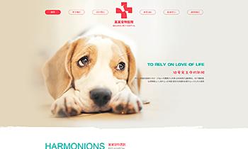 宠物医院介绍类网站