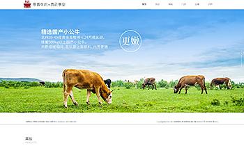 餐饮品牌展示类网站