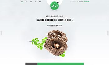 食品品牌宣传展示类网站
