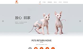 宠物介绍类网站